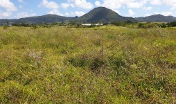 Agricultural Land for sale a t L'Etoile