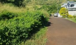Land for Sale Bois Pignolet